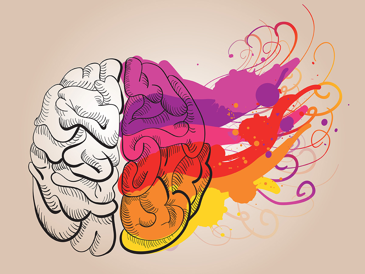 creativity and brain