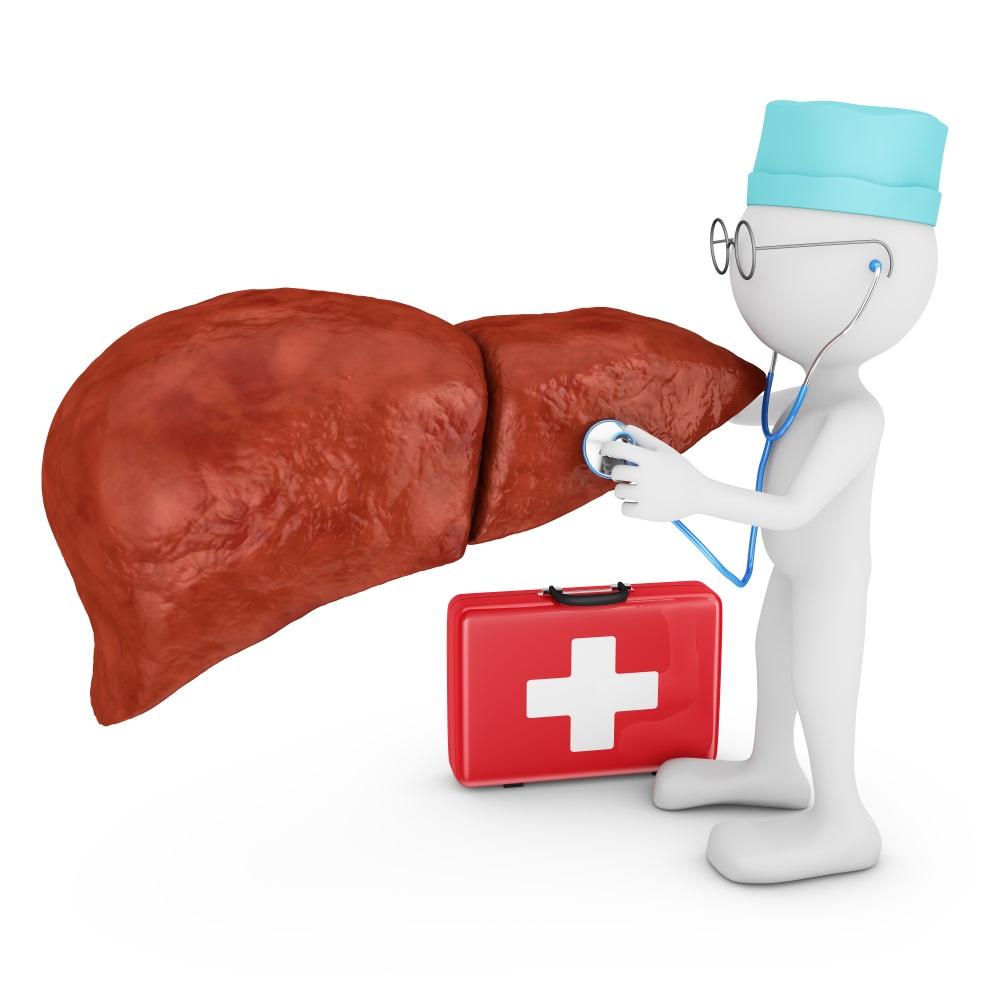 Doctor explores liver