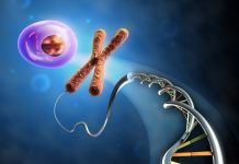From Dna to cell